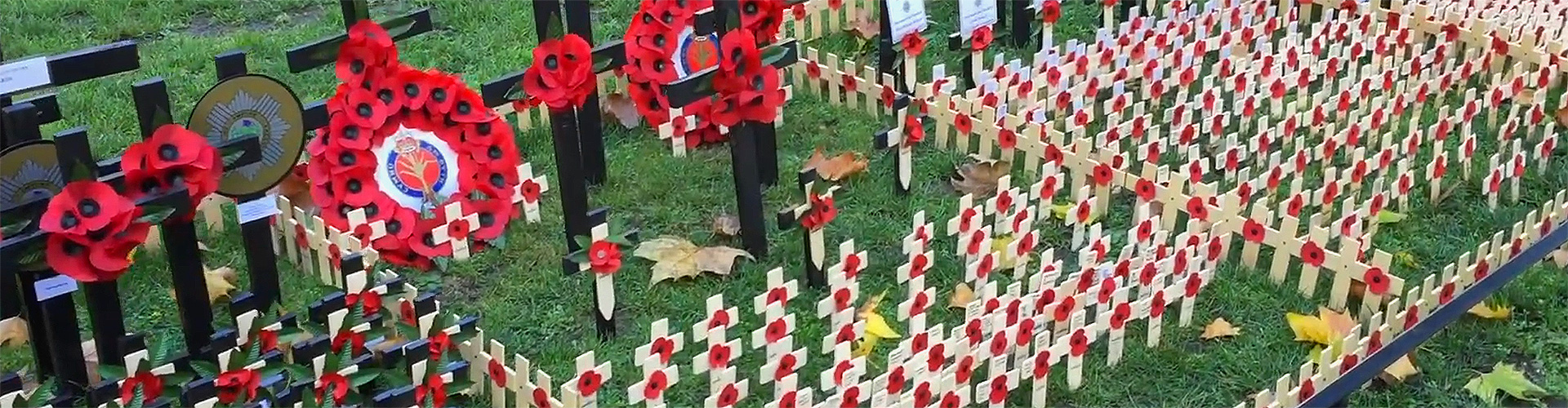 Field of Remembrance <br/> &nbsp; Time lapse project with The Poppy Factory