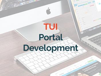 portal, web developers, web development, extranets, intranets